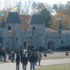 The Renaissance Festival